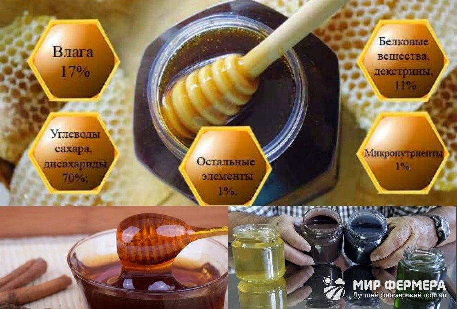Падевый мед состав