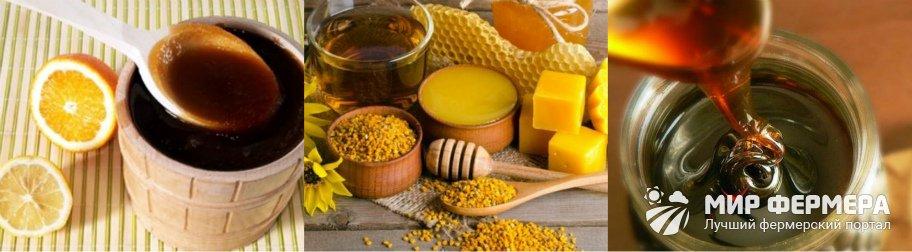 Падевый мед польза и вред