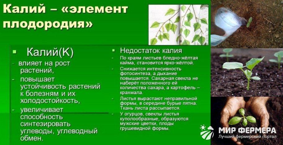 Удобрение сернокислый калий