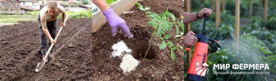 Калийные удобрения на огороде