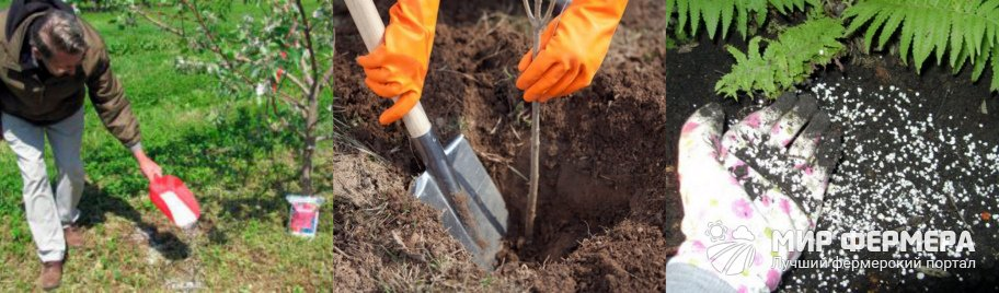 Сернокислый калий для сада