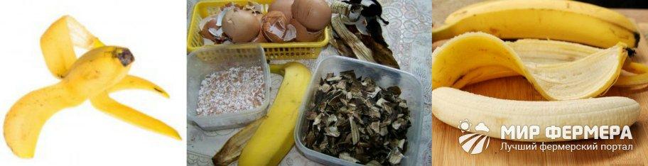 Подкормка из банановых шкурок