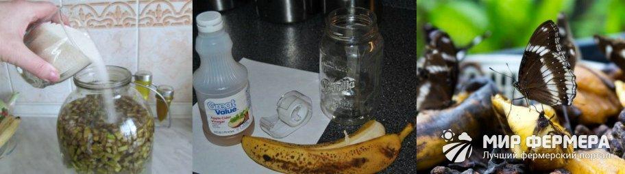 Банановая кожура от вредителей