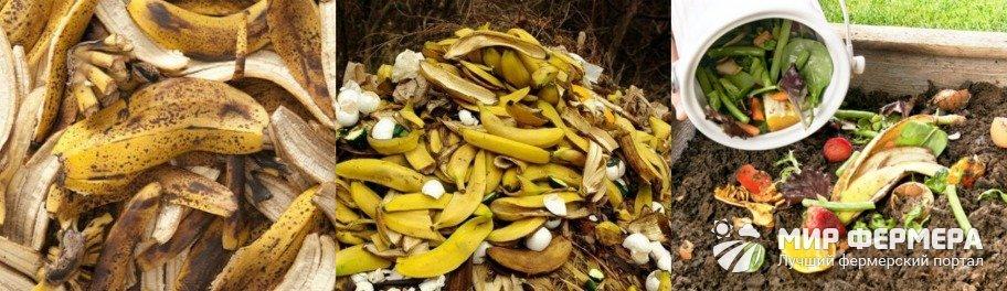 Банановый компост