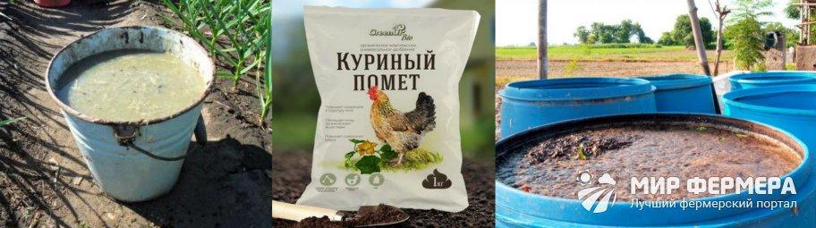 Куриный помет для картофеля