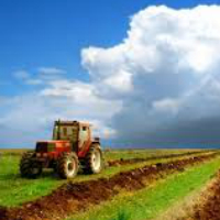 Сельхозземли можно будет изымать быстрее