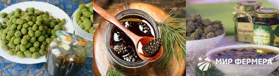 Варенье из сосновых шишек на зиму