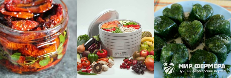 Заготовка овощей и фруктов на зиму