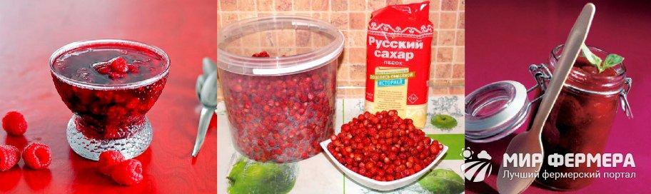 Заготовка ягод на зиму
