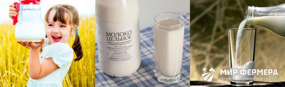 Нормализованное молоко - что это такое?
