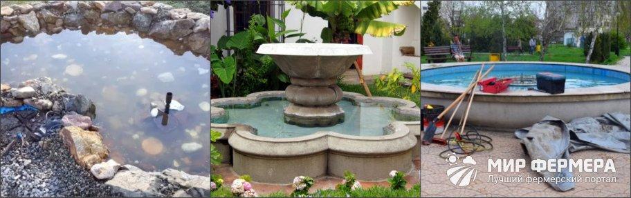 Как ухаживать за фонтаном