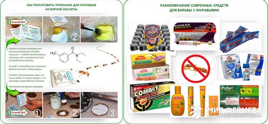 Химикаты от муравьев