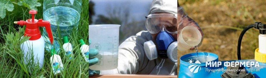 Рабочий раствор гербицида