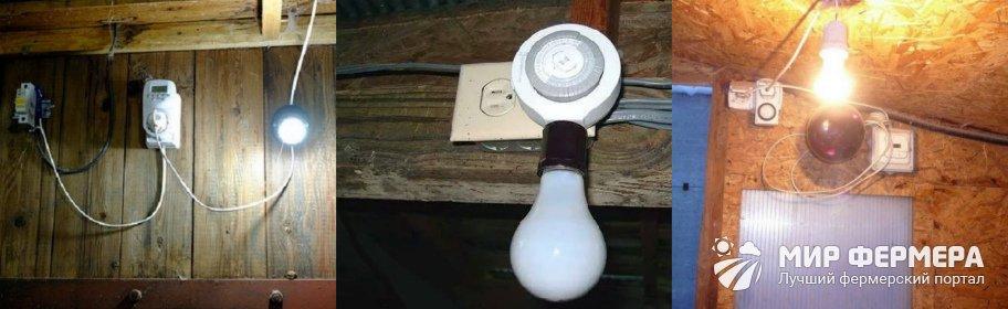 Как сделать свет в курятнике