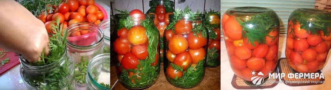 Помидоры с морковной ботвой без уксуса